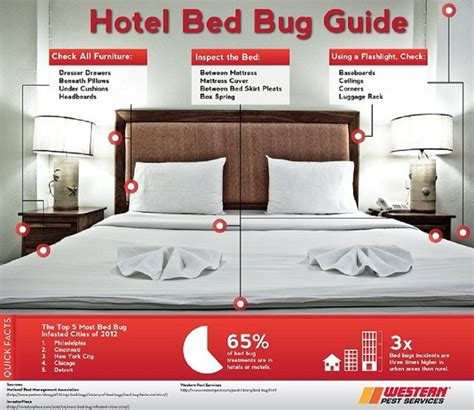 hotels with bed bugs bed bugs in hotels hotel bed bug prevention control