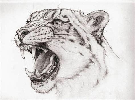 tattoo animal drawings pin by karen on drawing supplies pinterest