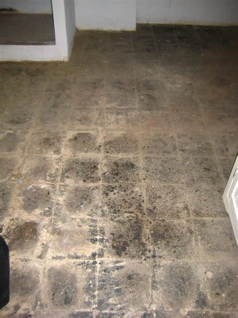 concrete floor paint excellent basement concrete floor