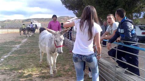 mujer es cogida por un burro dos chicas y un burro youtube