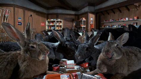 film giant rabbit 15 weird and wonderful rabbits in movies movie news