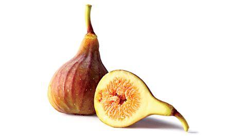 best fig fig fruit varieties southern living