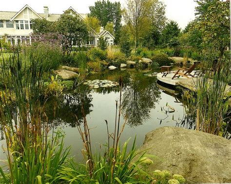 natural backyard pond 25 best ideas about natural swimming ponds on pinterest natural pools natural