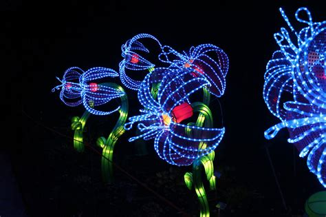 milwaukee lights festival 2017 from zigong city to milwaukee luxe light and home