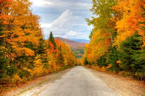 fall colors in maine maine fall foliage touring etravelmaine