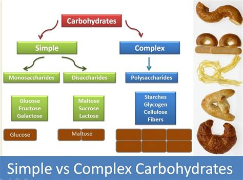 carbohydrates health definition three complex carbohydrates weight loss vitamins for