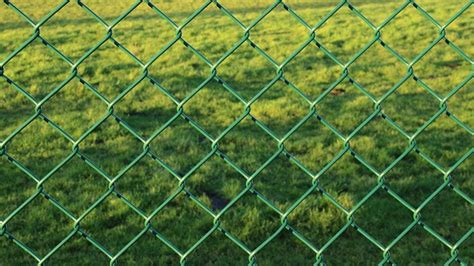 free pictures wire mesh fence 6 images found
