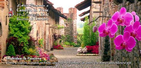 ricetto di candelo eventi eventi in piemonte ricetto di candelo in fiore 2012