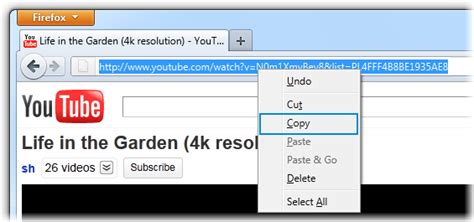 download mp3 file from youtube link how to download youtube playlist in a single click on my