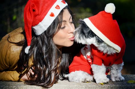 presents for dogs presents for dogs and hugo