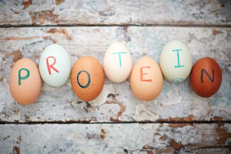 t protein low understanding low carb high protein diets oliver