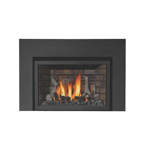Napolean Fireplace Inserts by Napoleon Ir3n 1sb Basic Fireplace Insert At Ibuyfireplaces