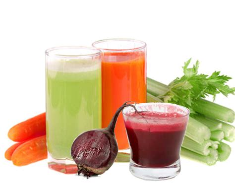 vegetables u can juice food processing business 七月 2013