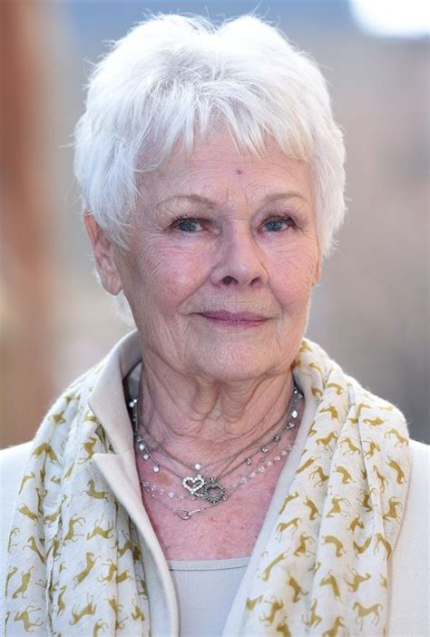 what products to use to get judi dench hair judi dench attends olivier awards 2015 with boyfriend