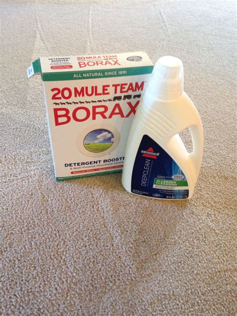 carpet cleaning solution  pet stains