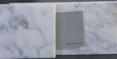Platinum Gray Benjamin Moore | gray glorious gray the rozy home