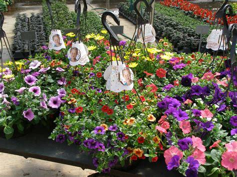 fiori gardens confetti gardens