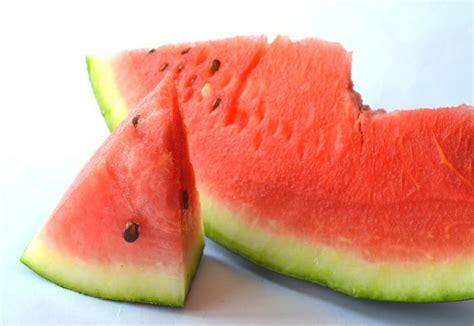 can eat watermelon can cats eat watermelon cattention