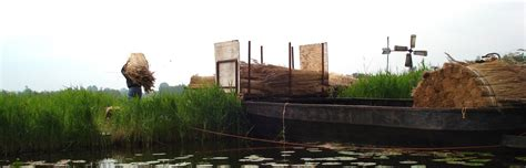 woonboot te koop west graftdijk rietendak awn 183 woonboot te koop 183 woonboot verkopen