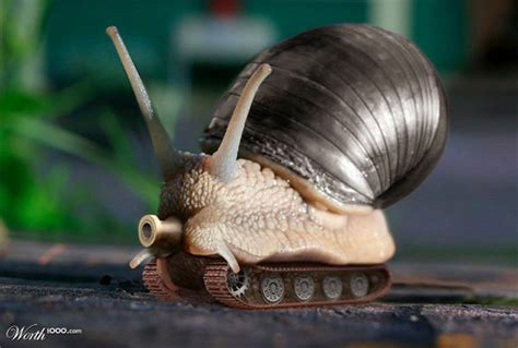Snail L by Animal Photo Manipulation 26 Photoshopped Robotic Animals Hongkiat