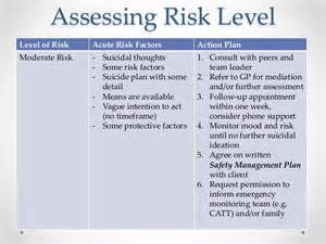professional risk assessment and self harm risk