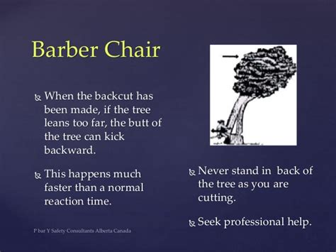 chainsaw safety you need to buck up and
