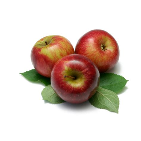 apple fuji fresh apple fuji 1ct prestofresh grocery delivery