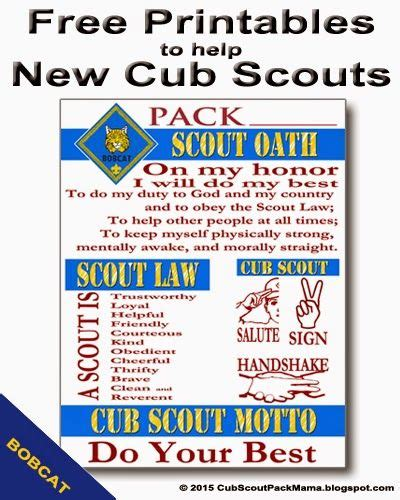 new year activities for cubs 25 best tiger scouts ideas on