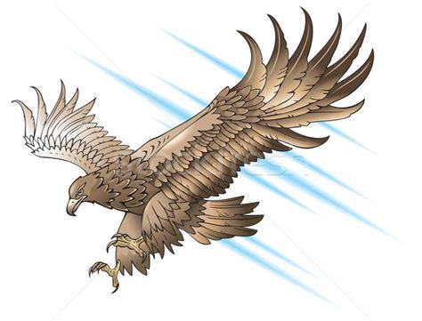 adler 183 fl 252 gel 183 vektor 183 natur 183 zeichen 183 vogel vektor
