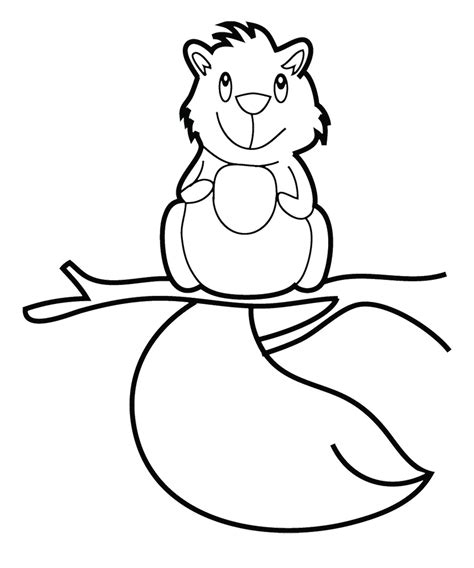 baby squirrel coloring page flying squirrel coloring page cliparts co