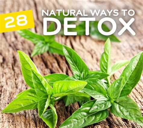 Does Detox Your by 28 Simple Ways To Detox Your Bembu