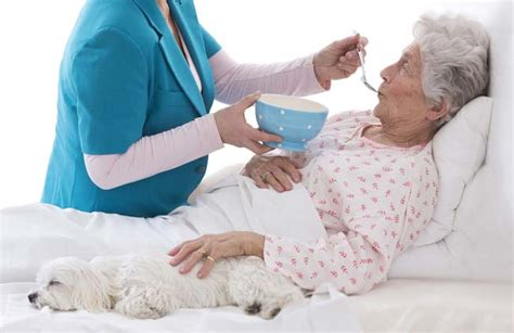 bed written how to take care of bedridden patient at home care24