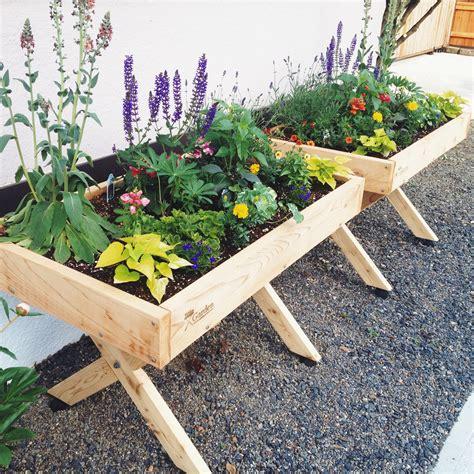 Simple Raised Bed Garden Plants