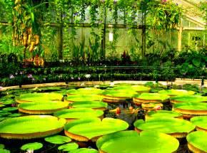 Botanic Gardens Uk Loveisspeed The Royal Botanic Gardens Kew