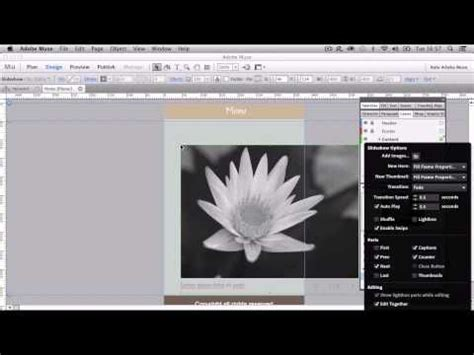 web layout muse 451 best images about adobe muse on pinterest template
