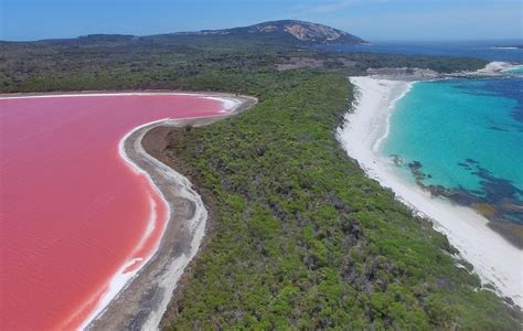 pink lake pink quot lake hillier quot middle island with esperance island cruises