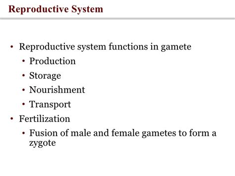 universitybeats compearsoneducation reproductive system reproduction