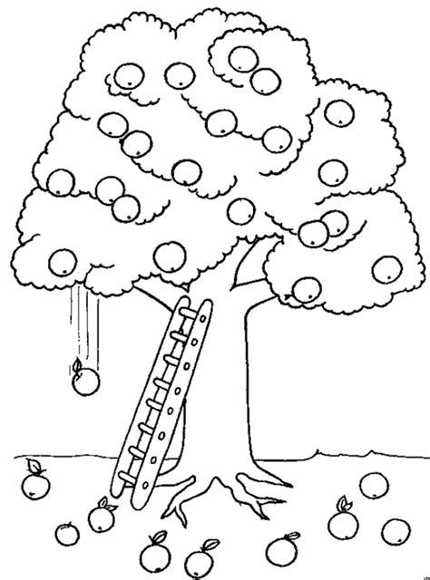 Amazing Apple Tree Printable Coloring Pages For Kids Tree Math Coloring Page