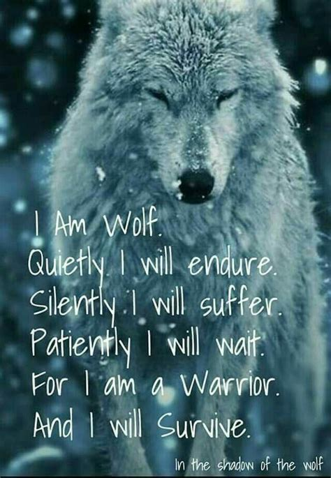 moon burned the wolf wars books 25 best lone wolf quotes on wolf quotes