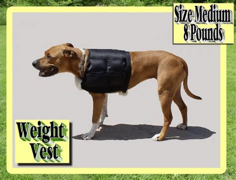 weight vest for dogs weight vest for dogs breeds picture