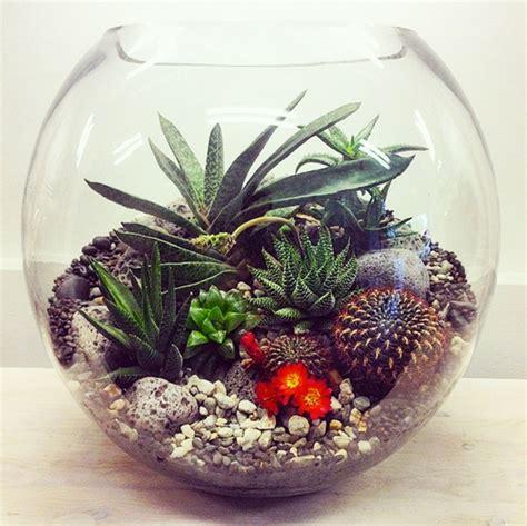 interesting vessels   indoor plants fashion