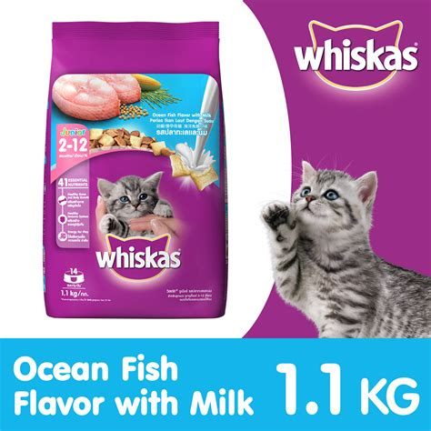 Whiskas Junior 1 1 Kg whiskas junior fish kitten food 1 1 kg dogspot
