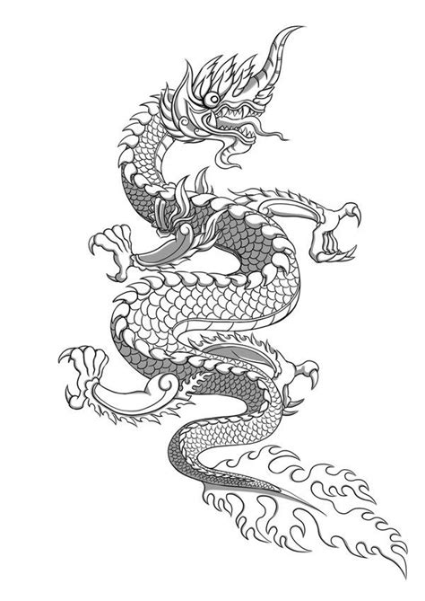 naga dragon tattoo 19 best tattoo ideas images on pinterest tattoo art