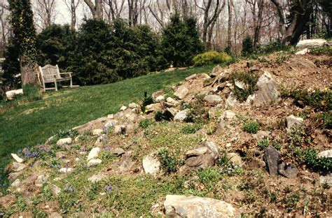 giardini rocciosi giardino roccioso guida completa
