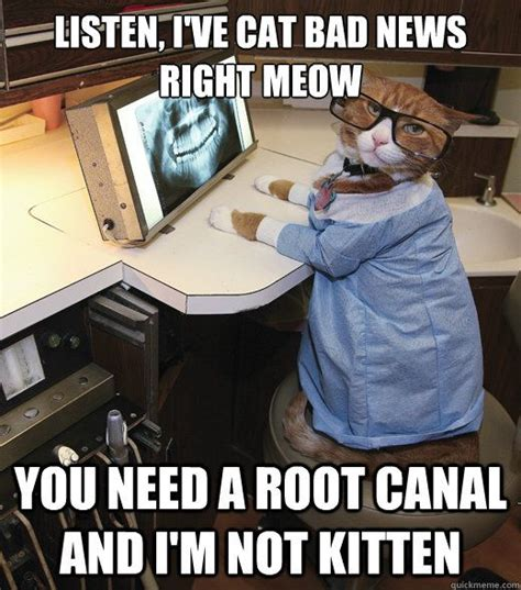 Meme Dentist - 25 best dental assistant quotes on pinterest dental