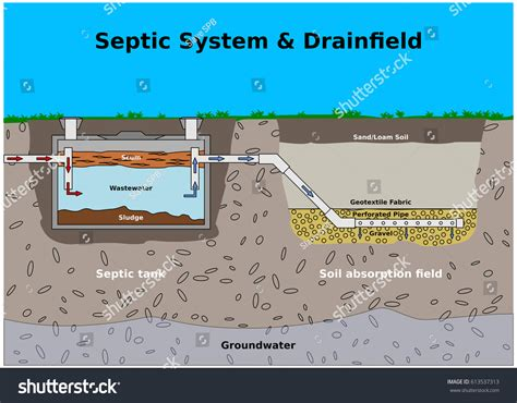 septic drain field diagram septic system drainfield color vector diagram stock vector