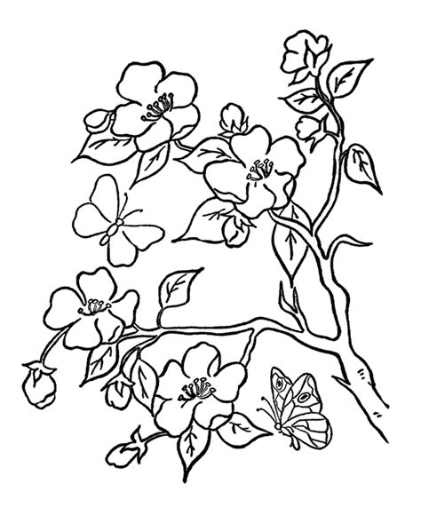 coloring pictures of flowers and trees 35 flower coloring pages coloringstar