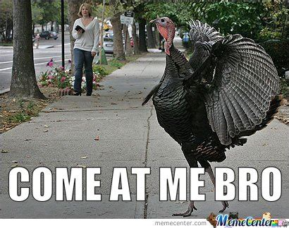 Thanksgiving Turkey Meme - thanksgiving meme come at me bro image courtesy of