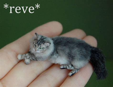 miniature in miniature cat sculpture by reveminiatures on deviantart