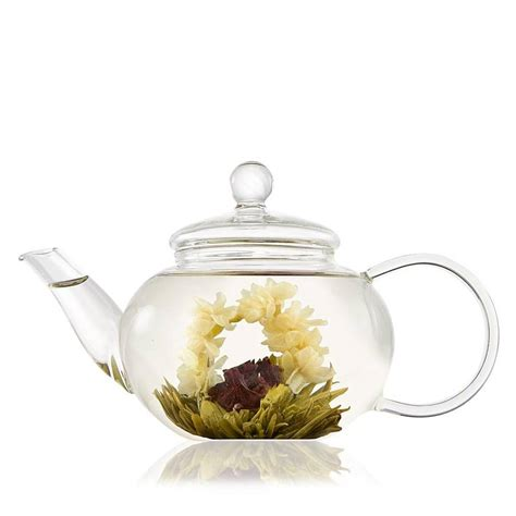 glass teapot with glass teapot with infuser by the teapot
